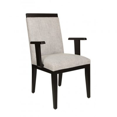Dorsa Arm Chair